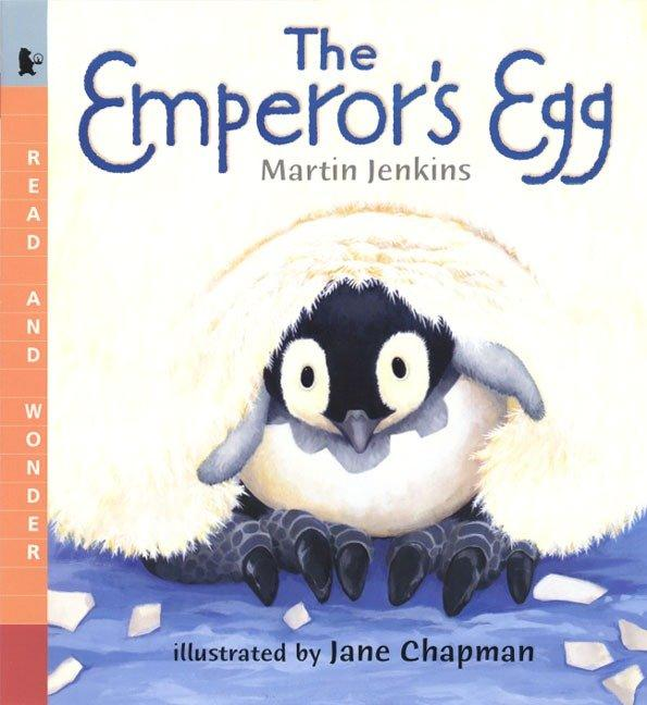 The Emperor's Egg: Read and Wonder als Taschenbuch