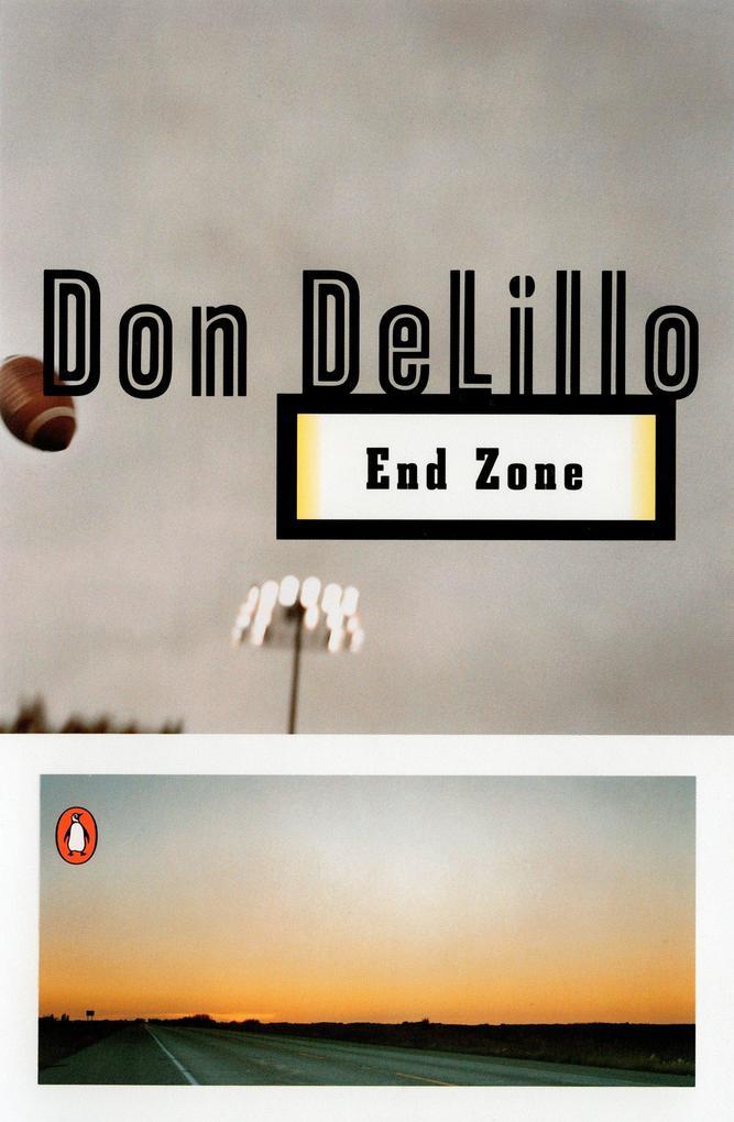 End Zone als Taschenbuch