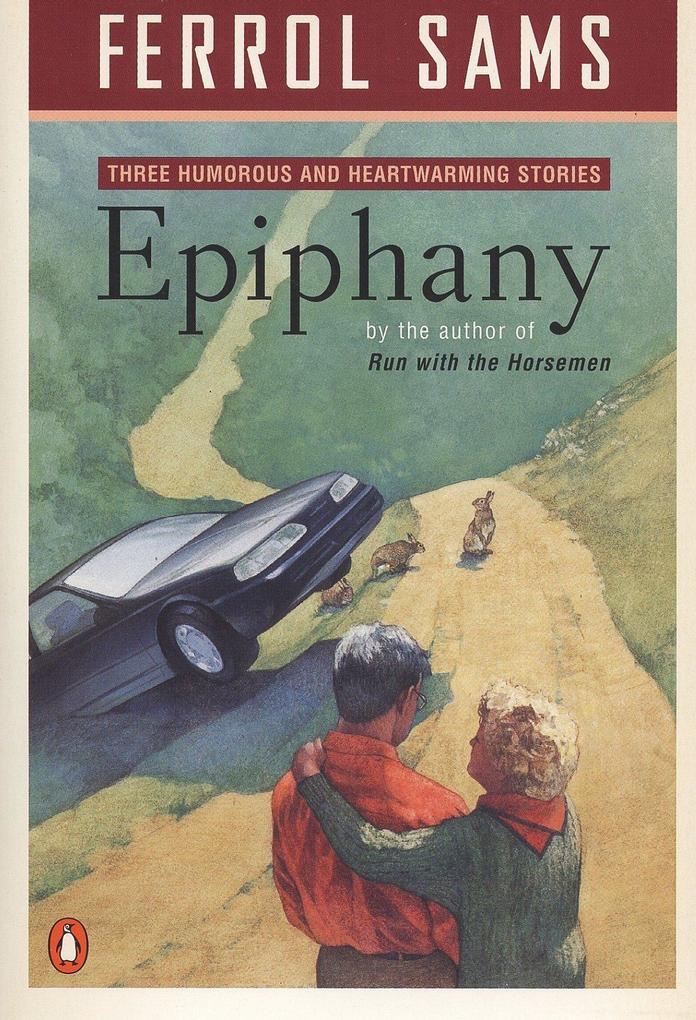 Epiphany: Stories als Taschenbuch