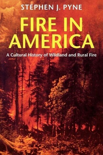 Fire in America als Taschenbuch