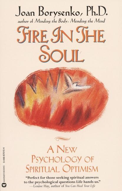 Fire in the Soul: A New Psychology of Spiritual Optimism als Taschenbuch