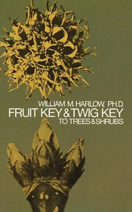 Fruit Key and Twig Key to Trees and Shrubs als Taschenbuch