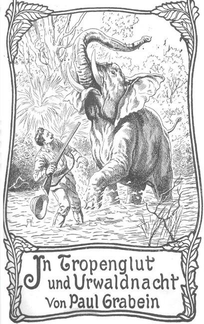 In Tropenglut und Urwaldnacht als Buch von Paul...