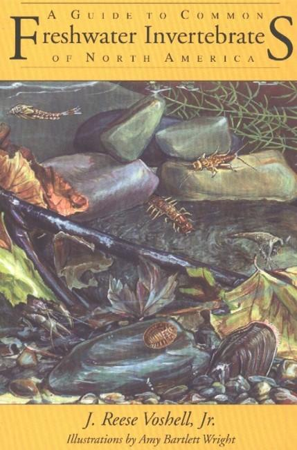 Guide to Common Freshwater Invertebrates of North America als Taschenbuch