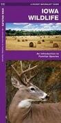 Iowa Wildlife: A Folding Pocket Guide to Familiar Species