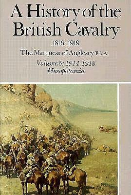 A History of the British Cavalry: 1914-1918, Mesopotamia, Volume VI als Buch (gebunden)
