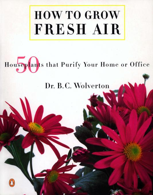 How to Grow Fresh Air: 50 House Plants That Purify Your Home or Office als Taschenbuch