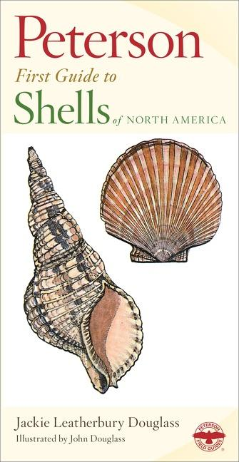 Shells of North America als Buch (kartoniert)