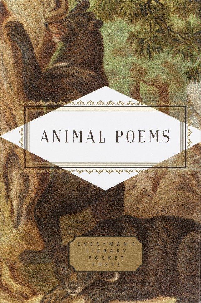 Animal Poems als Buch (gebunden)