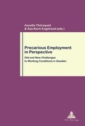 Precarious Employment in Perspective
