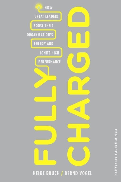 Fully Charged als eBook Download von Heike Bruc...
