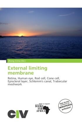 External Limiting Membrane als Taschenbuch von