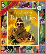 Audubon Butterflies Calendar