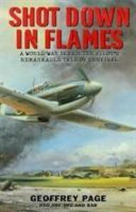 Shot Down in Flames als Buch