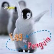 Life Cycles: Egg to Penguin