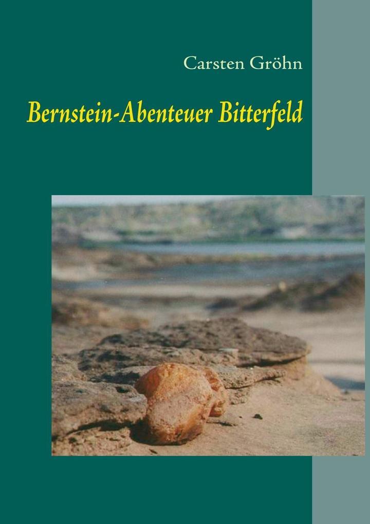 Bernstein-Abenteuer Bitterfeld als eBook Downlo...