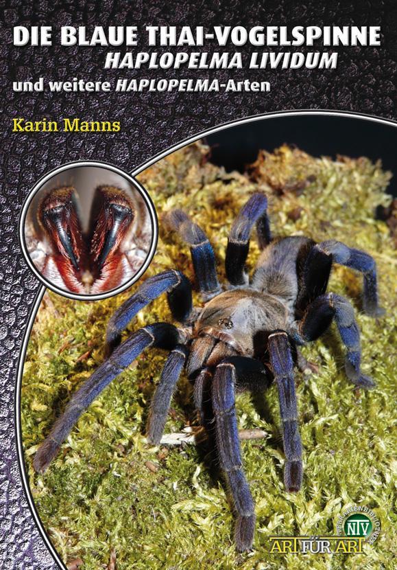 Die Blaue Thai-Vogelspinne als Buch von Karin M...