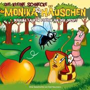 Die kleine Schnecke Monika Häuschen 24. Warum laufen Fliegen an der Decke?