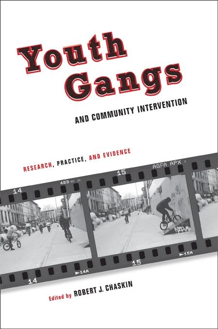 Youth Gangs and Community Intervention als eBoo...