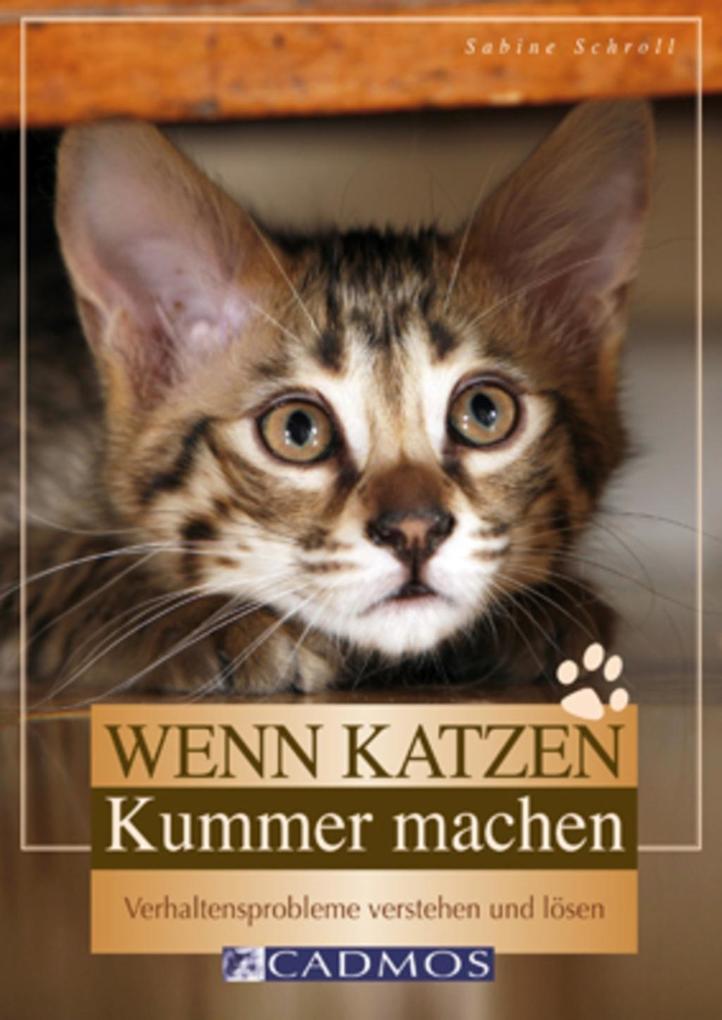 Wenn Katzen Kummer machen als eBook Download vo...