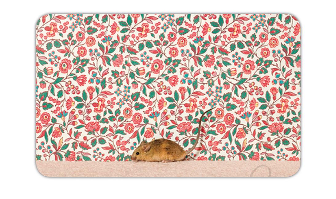 Animal House Brettchen Kleine Maus