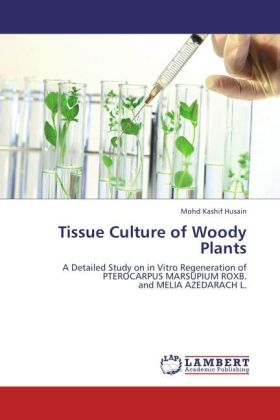 Tissue Culture of Woody Plants als Buch von Moh...