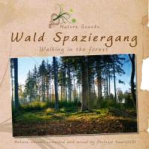 Wald Spaziergang