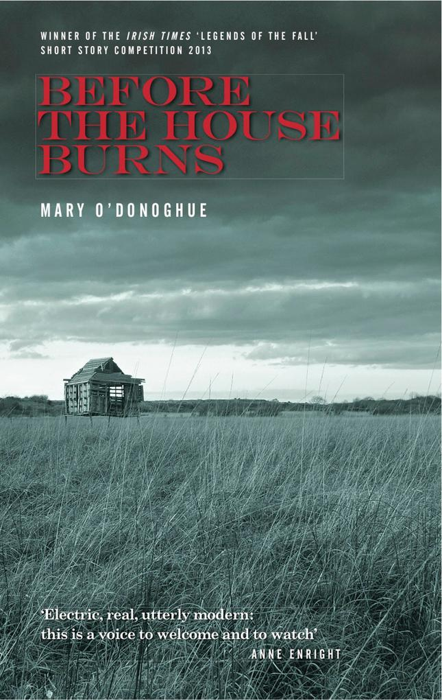 Before the House Burns als eBook Download von M...