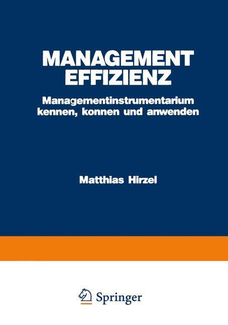 Management Effizienz als Buch von Matthias Hirzel