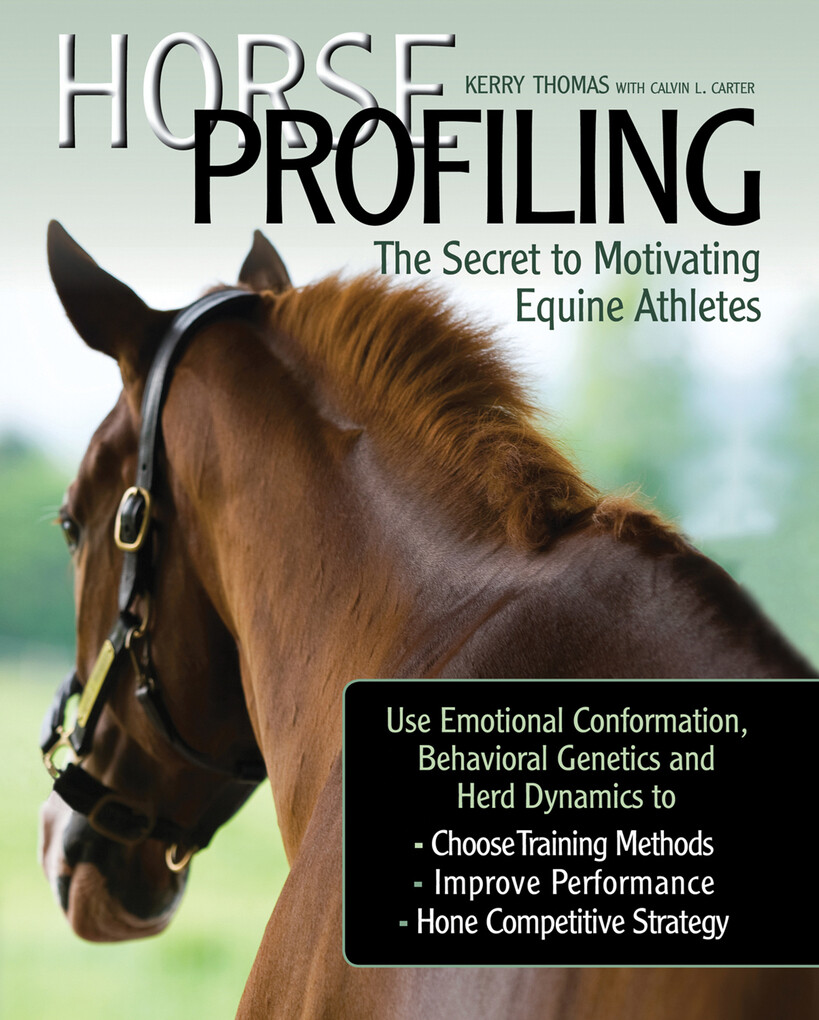 Horse Profiling: The Secret to Motivating Equin...