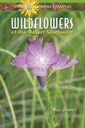 WILDFLOWERS OF THE DESERT SOUT