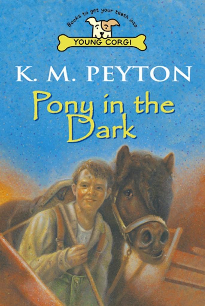 Pony In The Dark als eBook Download von K M Peyton