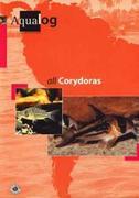 All Corydoras