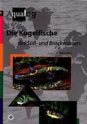 Die Kugelfische des Süß- und Brackwassers
