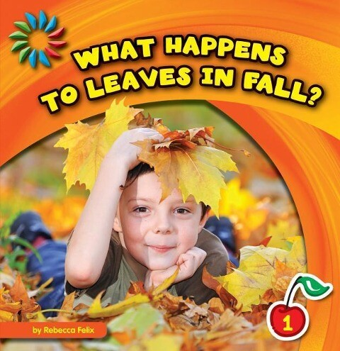 What Happens to Leaves in Fall? als Taschenbuch