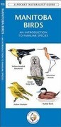 Manitoba Birds: A Folding Pocket Guide to Familiar Species