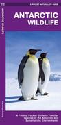 Antarctic Wildlife: A Folding Pocket Guide to Familiar Species of the Antarctic and Subantarctic Environments