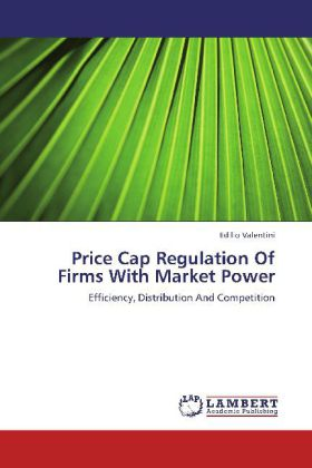 Price Cap Regulation Of Firms With Market Power...