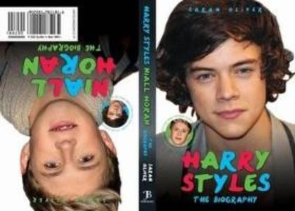 Harry Styles / Niall Horan - the Biography als Taschenbuch