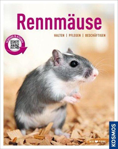 Rennmäuse als Buch von Anja Steinkamp