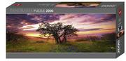 Heye - Panoramapuzzle 2000 Teile - Oak Tree 2000 Teile