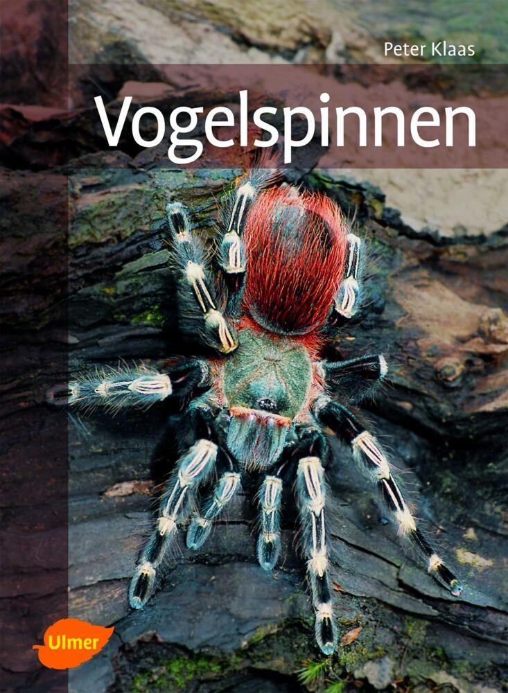 Vogelspinnen als Buch von Peter Klaas