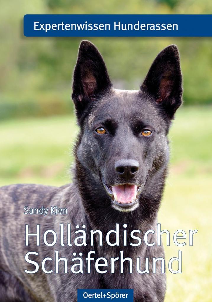 Holländischer Schäferhund als Buch von Sandy Kien