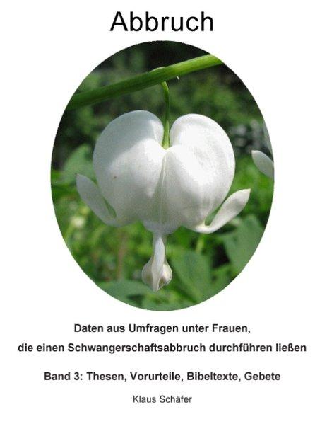 Abbruch als Buch von Klaus Schäfer