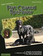 Unser Traumhund: Flat Coated Retriever
