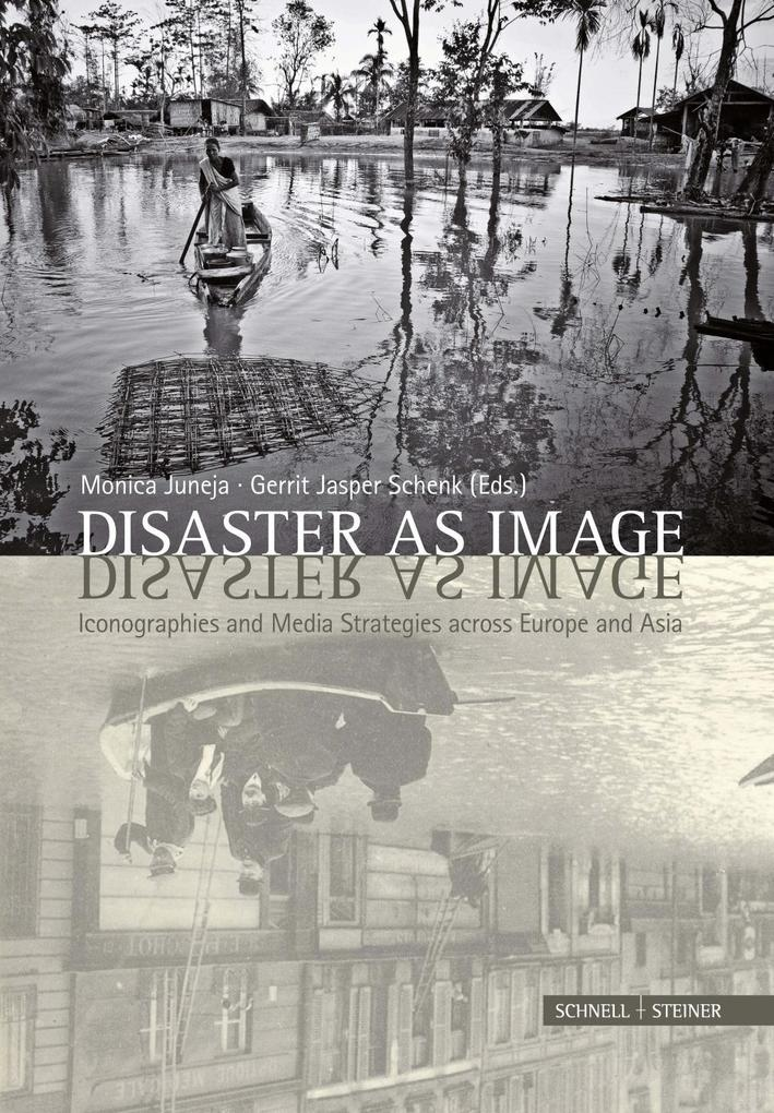 Disaster as Image als Buch von