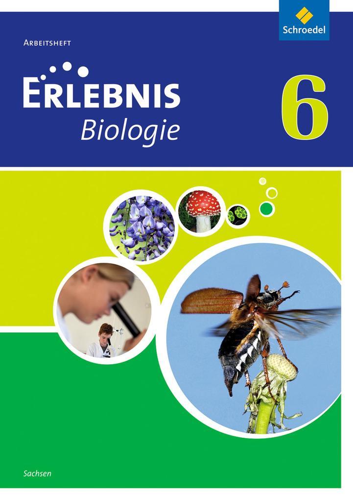 Erlebnis Biologie 6. Arbeitsheft. Sachsen als Buch