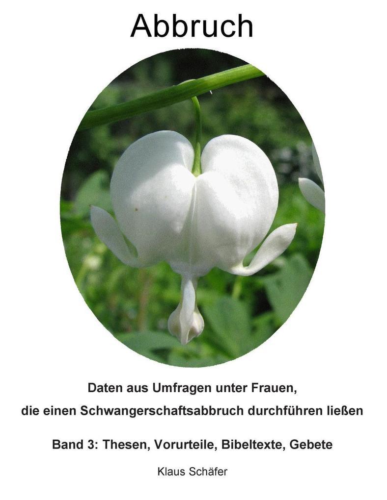 Abbruch als eBook Download von Klaus Schäfer
