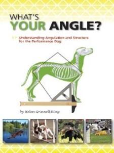 What´s Your Angle? als eBook Download von Helen...