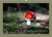 Pilze - Früchte des Waldes (Posterbuch DIN A4 quer)